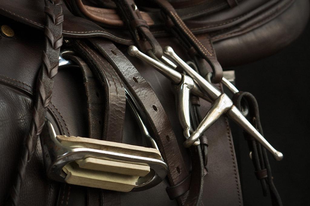 Saddle-2-Web.jpg